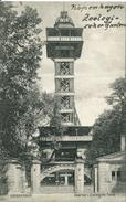 Kobenhavn - Taarner I Zoologisk Have 1907 (000475) - Danemark