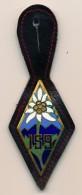Insigne 159 RIA - Régiment D'Infanterie Alpine De Briançon - 05 - Armée De Terre