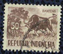 Indonésie 1956 Oblitéré Used Animaux Boeuf Bos Javanicus Banteng 50 Sen - Indonésie