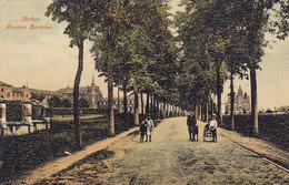 Virton - Avenue Bouvier (animée, Colorisée, Glacée, 1908) - Virton