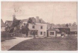 Ewhurst, The Green, Post Office Surrey 1904 Postcard, B679 - Surrey