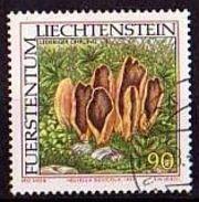 LIECHTENSTEIN Mi. Nr. 1153 O (A-4-25) - Liechtenstein