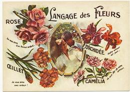 Langage Des Fleurs Orchidée Rose Oeillet Camelia Orchid Format 10/15 - Autres