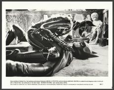 Michelle Pfeiffer & Michael Keaton, Batman Returns - Press Photo, 1992 - Photographs