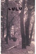 DEPT 16 : Types Paix Perforé édit. R Bergevin : Angoulème Le Jardin Vert Vers Les Volières - Angouleme