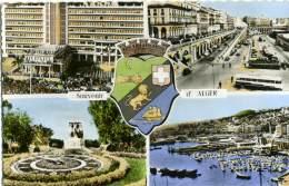 ALGERIE  ALGERIA  ALGER  Souvenir De..  Multivue - Algeri