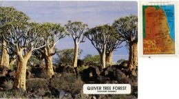 NAMIBIA  Quiver Tree Forest  Nice Stamp - Namibia