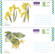 Irland, 2 Picture-Aerogrammes, Postage Paid, Yellow Iris + Honeysuckle - Luftpost