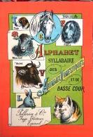 ALPHABET SYLLABAIRE DES ANIMAUX DOMESTIQUES Et De BASSE COUR. Série A. Images épinal - Livres Pour Enfants
