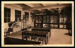 TORINO - Collegio San Giuseppe - Museo Zoologico - Non Viaggiata - Rif. 00722 - Education, Schools And Universities