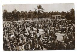 PHILLIPPEVILLE -VIAGGIATA MARCHE' DANS LE SUD -FP 1932 - Skikda (Philippeville)