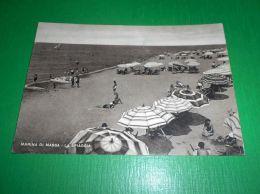Cartolina Marina Di Massa - La Spiaggia 1950 - Massa