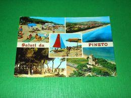 Cartolina Saluti Da Pineto ( Teramo ) - Vedute Diverse 1975 Ca - Teramo