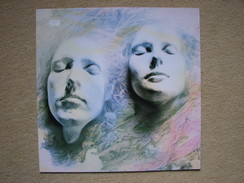 SHELLEYAN ORPHAN - HELLEBORINE (LP) (ROUGH TRADE RECORDS 1987) - Rock