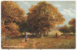Betchworth Park, Surrey - Surrey