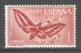 Spanish Sahara 1964,Butterflies Moth,Sc 144,VF Mint Hinged* - Sahara Espagnol