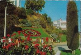 Vina Del Mare ** Belle Carte Dentelée NEUVE **  Edition Grohmann Y Cia (Valparaiso) N°P.2100/4 - Cile