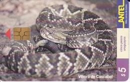 Nº 84 TARJETA DE URUGUAY DE UNA VIBORA DE CASCABEL (SNAKE-SERPIENTE)  (CHIP G4 NEGRO) - Uruguay