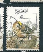 N° 389 Roitelet Huppé (sur Le Nid)  Timbre Açores (1989) Oblitéré - Azores