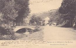 Falaën - Paysage Sur La Molignée à Foy-Marteau (Nels, Animée, Vaches, 1905) - Mettet