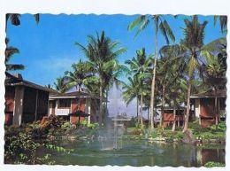 INDONESIA - BALI - VIEWS IN PERTAMINA COTTAGE GARDEN - 1960s/70s  ( 1611 ) - Cartes Postales