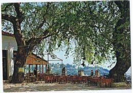 GREECE - PELION - CENTRAL SQUARE OF THE VILLAGE MACRINITSA - 1970s ( 1662 ) - Cartes Postales