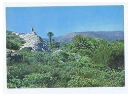 GREECE - CRETE - SITIA - THE PALM-TREE FOREST - VAI - 1970s ( 1707 ) - Cartes Postales