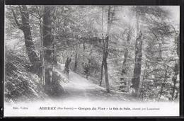CPA 74 - Annecy, Gorge Du Fier - Le Bois Du Poëte - Annecy