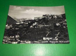 Cartolina Massa - Castello Medioevale Malaspina 1960 Ca - Massa