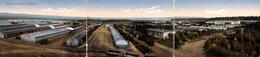 Panorama Du Camp D'Elsenborn (triple Carte, Animation, Train, Colorisée) - Elsenborn (camp)