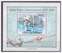 0228 Comores 2009 Polar Penguin Owl  S/S MNH Imperf - Postzegels