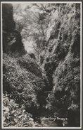 The Lydford Gorge, Devon, C.1930 - RP Postcard - England
