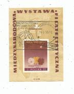Timbre , POLOGNE , POLSKA , MIEDZYNARODOWA WYSTAWA FILATELISTYCZNA , 1955 , BLOC - Blocks & Sheetlets & Panes