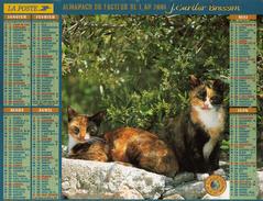Calendrier Almanach La Poste 2000 CHATS écaille De Tortue Couleur Isabelle - Calendriers