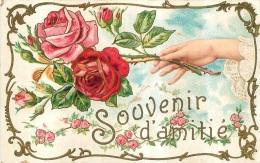 SOUVENIR D'AMITIE - Illustrateurs & Photographes