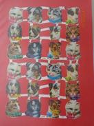 1  PLANCHE  DE  24  DECOUPIS  ATTACHES  DE  CHIENS  ET  DE  CHATS - Animales