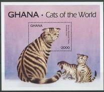 Ghana 1994 Yvertn° Bloc 246 *** MNH Cote 55 FF Faune Cats Chats Katten - Ghana (1957-...)