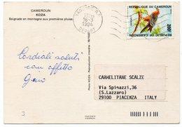 CAMEROUN/CAMEROON - KOZA BAIGNADE EN MONTAGNE AUX PREMIERES PLUIES / THEMATIC STAMPS-BIRD - Camerun