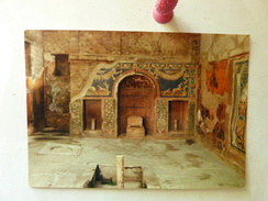ERCOLANO - Casa Di Poseidone E Anfitrite - Mosaico - Ercolano