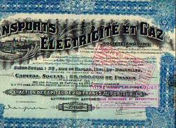 Transports, électricité Et Gaz (CONSTANTINOPLE) - Action De Capital De 250 Fr - Capital Social : 88.000.000 Fr ---> - Transports