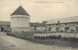 PIE-17-P.AM1. 3166 :  FERME DE BEAUCE. ORVILLIERS - Autres Communes