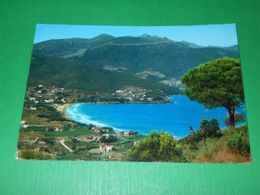Cartolina Procchio ( Elba ) - Il Golfo 1961 - Livorno