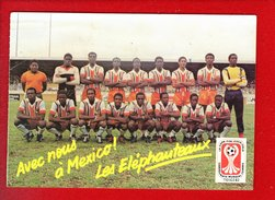 1 Cp Carte Postale  - Avec Nous A Mexico Les Elephanteaux - Calcio