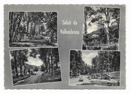 SALUTI DA VALLOMBROSA - VEDUTE   VIAGGIATA FG - Firenze