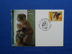 Maximum Card, , Aap, Monkey, Zoo - Apen
