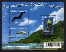Wallis Et Futuna 2016 - Faune, Oiseaux De Wallis Et Futuna - BF Neufs // Mnh - Unused Stamps