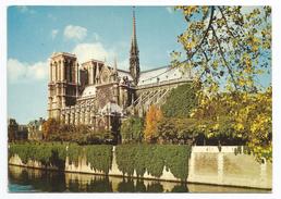 1981, Paris - Notre Dame. - Ile-de-France