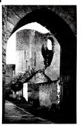 Dordives. La Porte D'entrée Du Chateau Du Mez Le Maréchal. - Dordives
