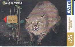 Nº 273 TARJETA DE URUGUAY DE UN GATO  DE PAJONAL (CAT-CHAT-GATO) - Uruguay