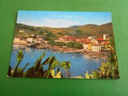 Cartolina Porto Azzurro - Isola D' Elba - La Spiaggia 1962 - Livorno